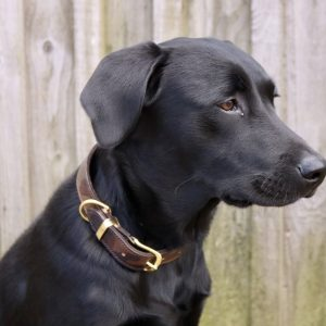 Camouflage leather dog collar